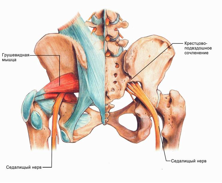 Zashchemlenie-nerva-v-noge