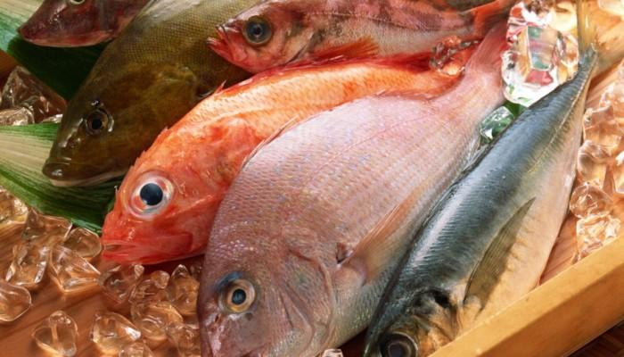 Рыба-жирных-сортов-способна-предотвратить-развитие-ревматоидного-артрита