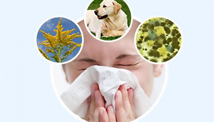 1437648159_allergiya-pitanie-pri-lechenii