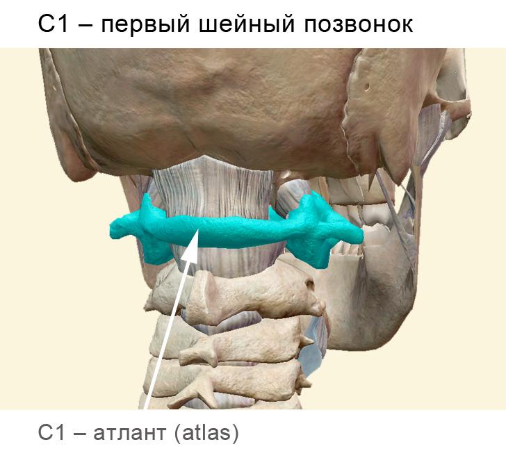C1_Atlant_Rus