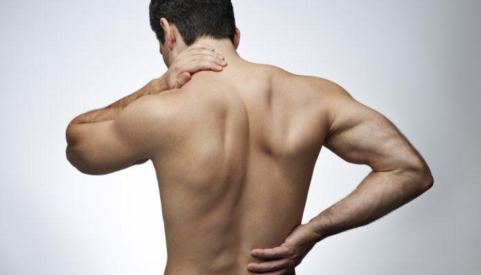 bol-v-spine1