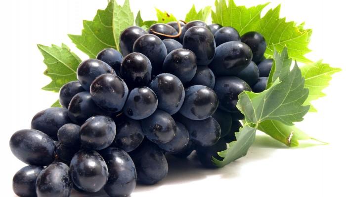 Лучший-сорт-винограда-Кодрянка1